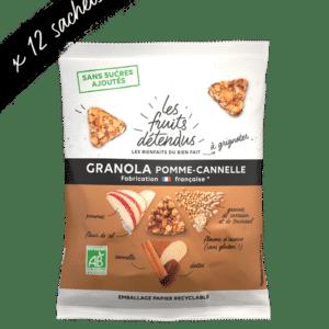 Snack granola pomme cannelle - granola bio